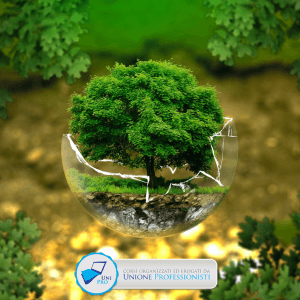 valutazione impatto ambientale e valutazione ambientale strategica