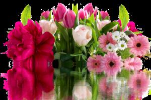 festa della mamma: fiori